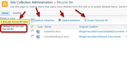 Using_the_Recycle_Bin_Site_Collection_Recycle_Bin_Items.png