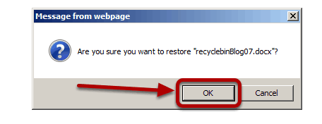 Using_the_Recycle_Bin_accept_the_option_dialog_box..png