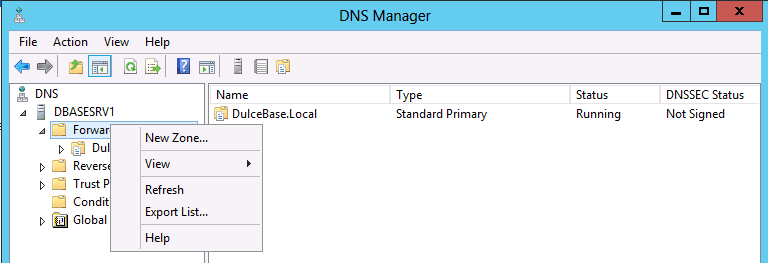 New Zone in DNS Manager Stub Zone WIndows Server